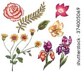 hand drawn tropical flower... | Shutterstock .eps vector #374005069