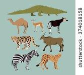 vector set of different african ... | Shutterstock .eps vector #374018158