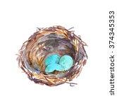 Cute Birds Nest With Blue Eggs...