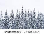 Snow on trees