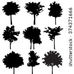 set of nine trees vector... | Shutterstock .eps vector #374371666