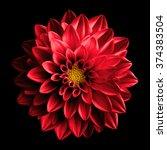 Surreal Dark Chrome Red Flower...