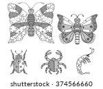 hand drawn bright art set of... | Shutterstock . vector #374566660