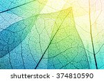 macro leaves background texture. | Shutterstock . vector #374810590