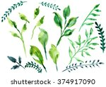 watercolor. set with floral... | Shutterstock . vector #374917090