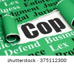 law concept  black text cop... | Shutterstock . vector #375112300