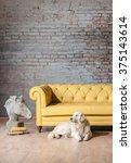 Classic Yellow Sofa Living Roo...