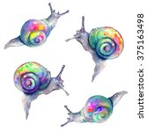 Rainbow Snails Pattern On Whit...