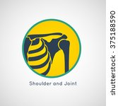 shoulder and joint vector | Shutterstock .eps vector #375188590