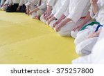 people in kimono sitting on... | Shutterstock . vector #375257800