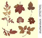 vector illustration set of... | Shutterstock .eps vector #37527451