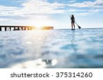 summer water sports. silhouette ... | Shutterstock . vector #375314260