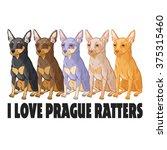 colored vector illustration of... | Shutterstock .eps vector #375315460