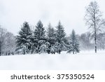 trees during a snow storm | Shutterstock . vector #375350524