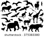 set of animals silhouettes on...   Shutterstock .eps vector #375383380