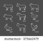 linear set of farm animals.... | Shutterstock . vector #375662479