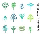 set of graphical line trees and ... | Shutterstock .eps vector #375751510