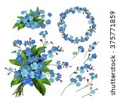 Stock vector the set of spring flowers forget me not flowers spring vector illustration isolated on white 375771859