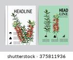 brochure flyer design layout... | Shutterstock .eps vector #375811936