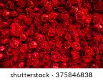 red natural roses background | Shutterstock . vector #375846838