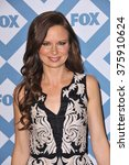 Small photo of PASADENA, CA - JANUARY 13, 2014: Mary Lynn Rajskub at the Fox TCA All-Star Party at the Langham Huntington Hotel, Pasadena.