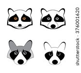 raccoon logo. vector... | Shutterstock .eps vector #376001620