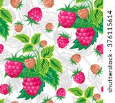 illustration. classic colorful ... | Shutterstock . vector #376115614