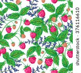 raspberries seamless pattern...   Shutterstock . vector #376116610