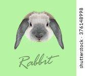 rabbit animal. vector...   Shutterstock .eps vector #376148998