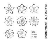 set gray of vectorized flowers | Shutterstock .eps vector #376150540