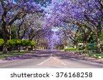 Street In Pretoria Suburb Line...