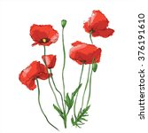hand draw of flower. vector... | Shutterstock .eps vector #376191610