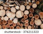Wood Pieces  Tree Chops Stored...