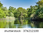 big  beautiful  old oak forest. ... | Shutterstock . vector #376212100