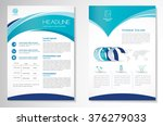 vector brochure flyer design... | Shutterstock .eps vector #376279033