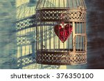 Heart Inside The Bird Cage....