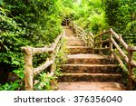 Scenic Stone Stairs Among Green ...