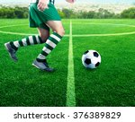 football player on the football ... | Shutterstock . vector #376389829