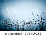 silhouette of flowers at... | Shutterstock . vector #376419268