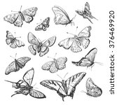 collection of drawings... | Shutterstock .eps vector #376469920