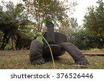 giant tortoise | Shutterstock . vector #376526446