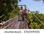 footpath in jungle at tenerife... | Shutterstock . vector #376549450