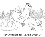 coloring page   hen with chicken | Shutterstock .eps vector #376569040