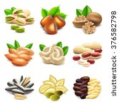 nuts icons detailed photo... | Shutterstock .eps vector #376582798