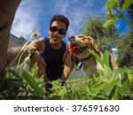 beagle   owner and smile beagle ... | Shutterstock . vector #376591630