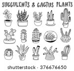 hand drawn succulents and... | Shutterstock .eps vector #376676650