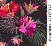 seamless vector tropical... | Shutterstock .eps vector #376677829