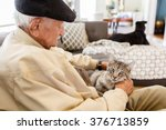 Stock photo elderly man with his pet cat in a home setting 376713859