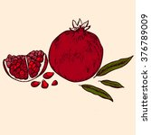 a pomegranate piece with... | Shutterstock .eps vector #376789009