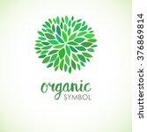floral logo design template....   Shutterstock .eps vector #376869814